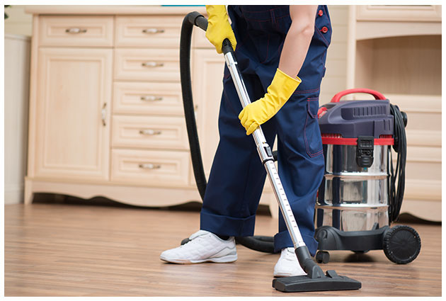 wet and dry vacuum cleaner by Stada