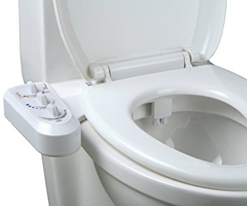 Be The Change With A Bidet Why You Should Quit Using